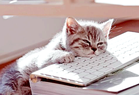 Если дома стало скучно. что делать?